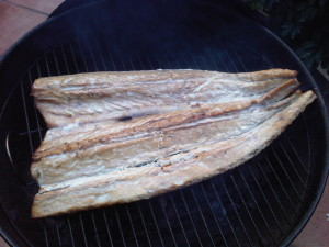 Now that's why you catch snoek. Delicious on the braai.