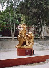 Golden Monkeys of China